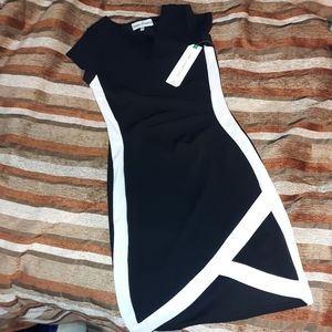 Almost famous fitted dress / skirt
